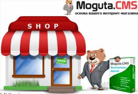 Скрипт интернет магазина Moguta (nulled)